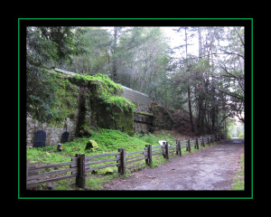 Lime Kiln Trail, Pogonip Park, Santa Cruz, CA